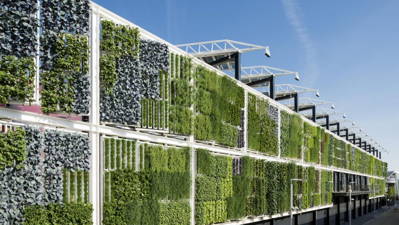 Giardino verticale - Vismara architettura d'interni - Paderno Dugnano